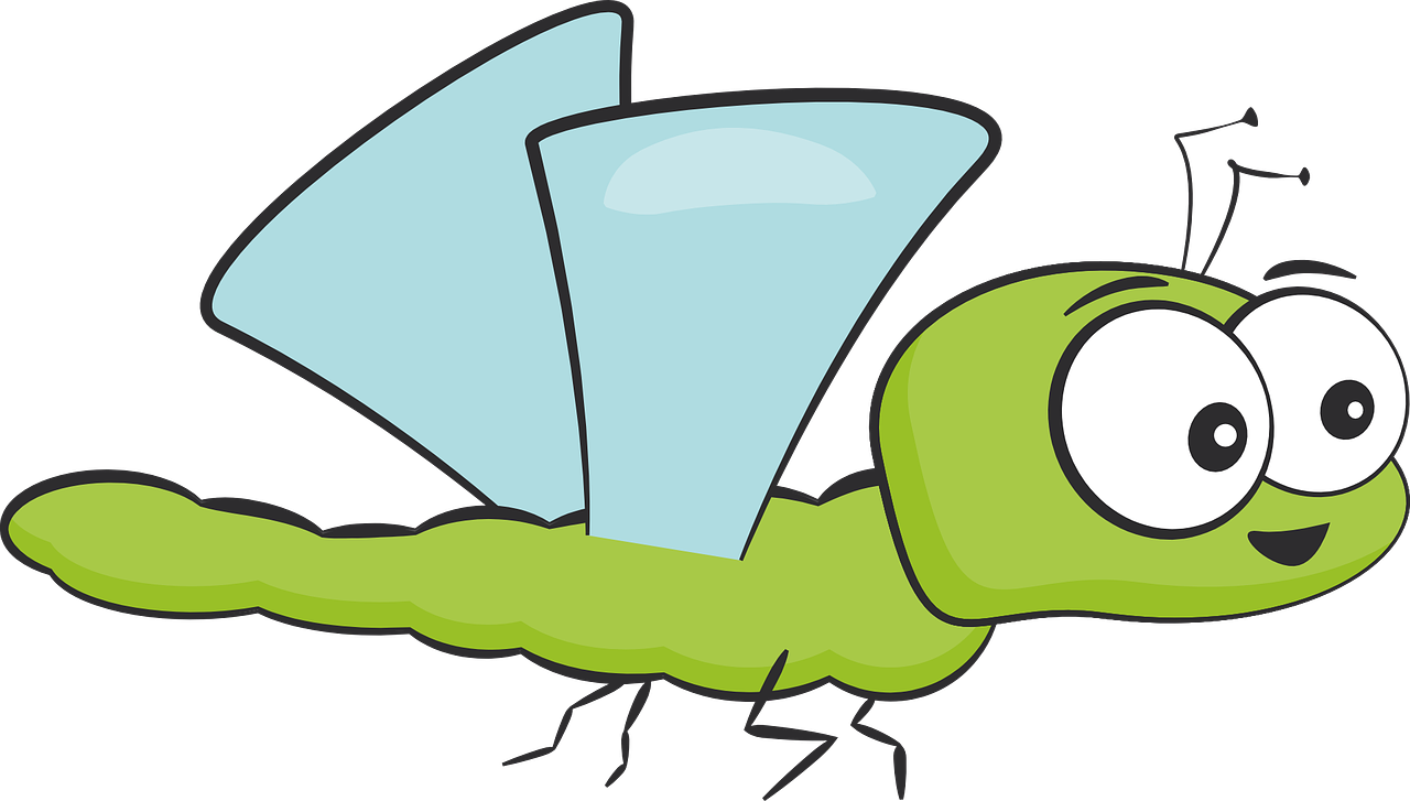 Protectie sanatoasa impotriva insectelor