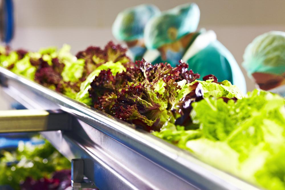 salatele la pungă
