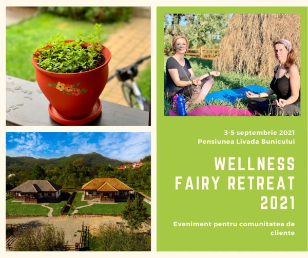 Wellness Fairy Retreat